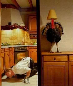 thanksgiving_funny_picture_07
